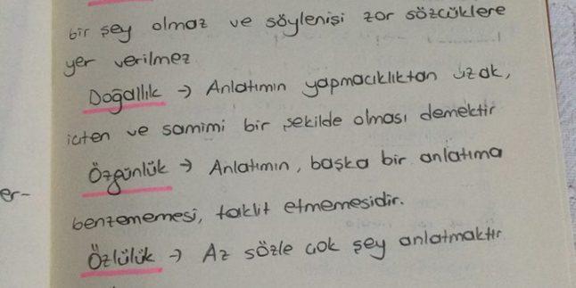 Pratik DGS Türkçe Notları