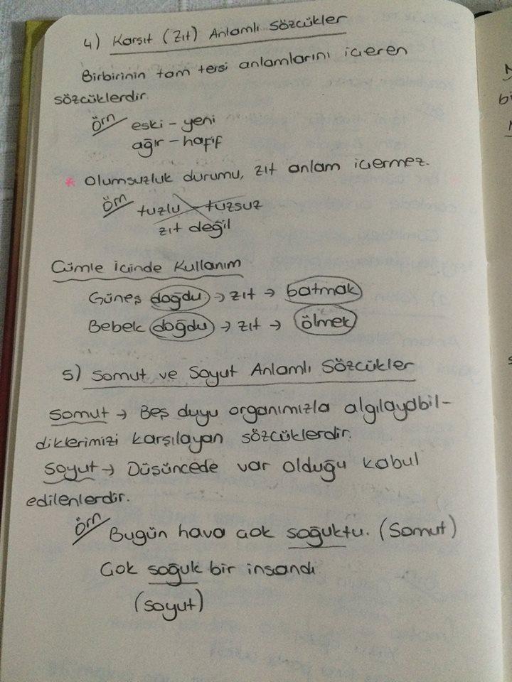 dgsli.org türkçe (2)