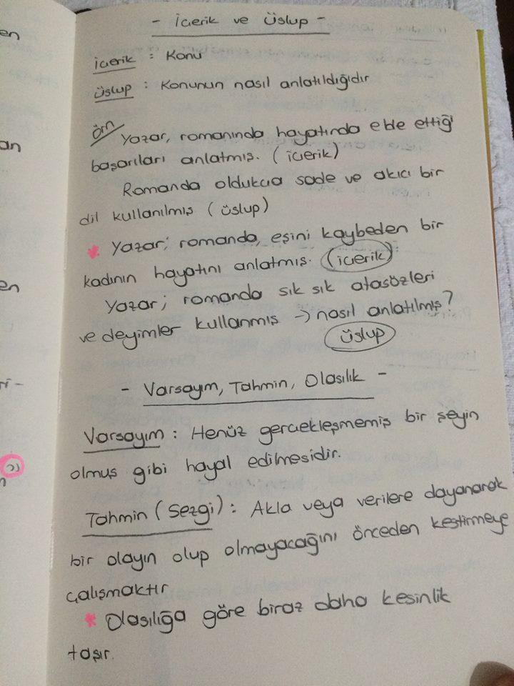 dgsli.org türkçe (9)